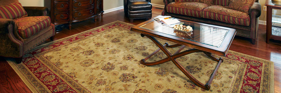 Tampa St Petersburg rug and carpet cleaning